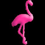 Le flamand rose, symbole d'Esprit Sud Sevens, pour illustrer les membres actifs de l'association de rugby à 7 Esprit Sud Sevens