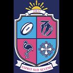 Logo ES7 permet d'enrichir la page d'accueil et placer une image forte sur l'association Esprit Sud Sevens.