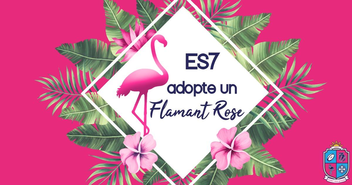 ES7 adopte Nossa un flamant rose